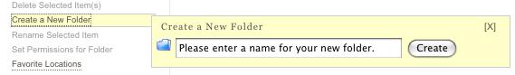 Name a New Folder