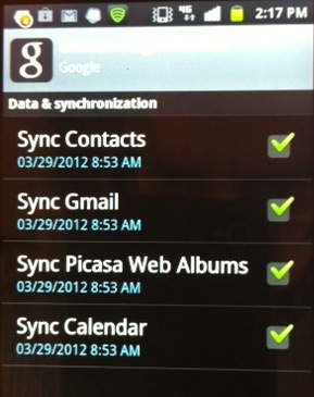 These are the sync preferences that you can select for Google Sync