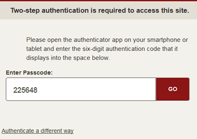 authenticate with a passcode