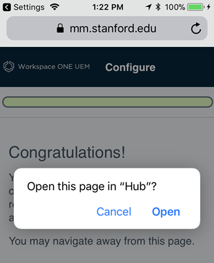 allow page to open in Hub