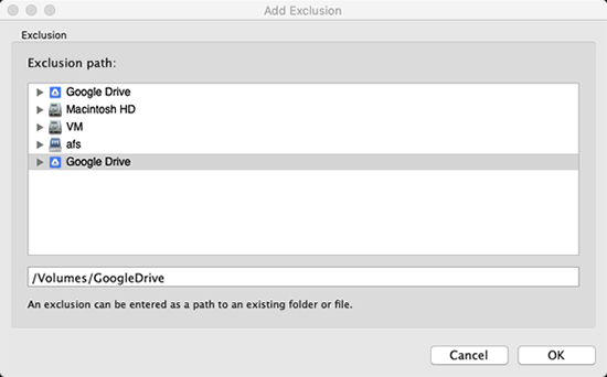 Screen showing Google Drive in exclusion path
