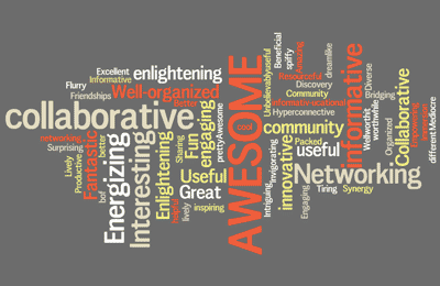 words used by attendees to describe the IT Unconference experience