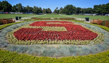 Image of Stanford garden